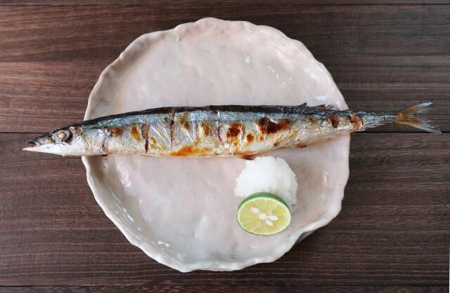 秋分~秋刀魚(さんま)